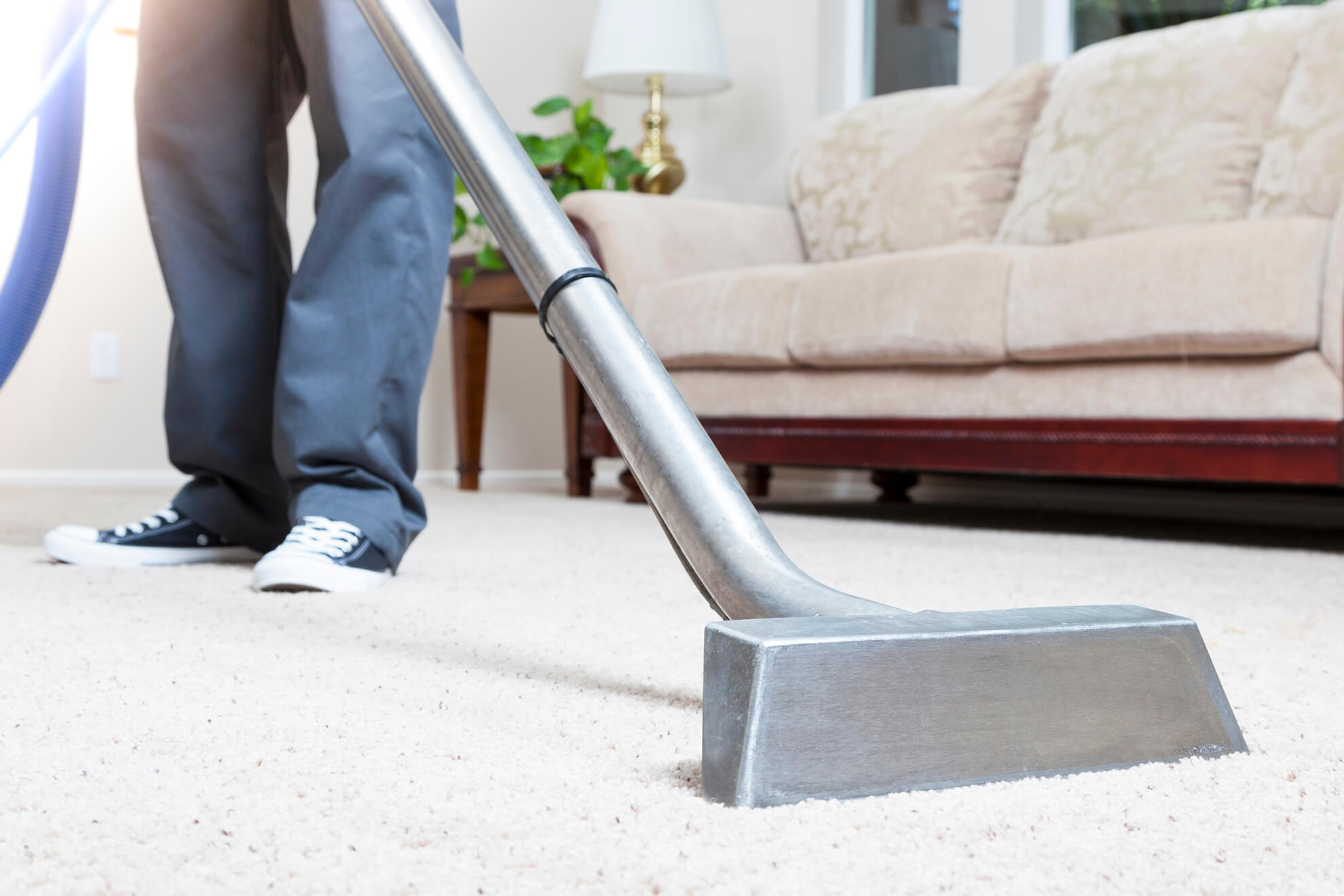 Dream Steam Carpet Cleaning St Paul Minneapolis