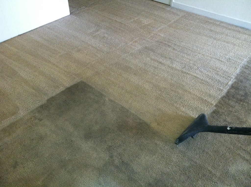 Carpet And Flooring Minneapolis Area