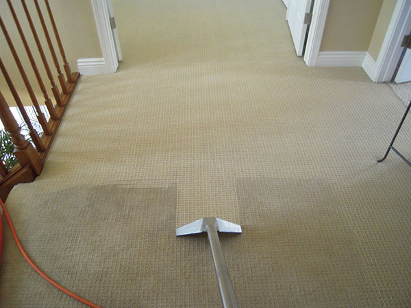 Professional Carpet Cleaning Before And After Photos